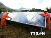 RoK group invests in solar power projects in Dak Nong