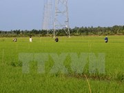 Japan puts stress on agricultural deal with Vietnam