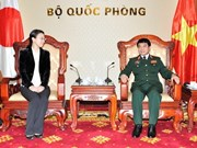Japan to support Vietnam in peacekeeping missions