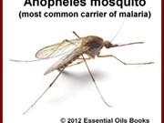 Conference discusses malaria elimination