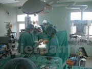 Vietnam operates 1,500 kidney transplants