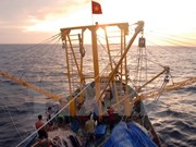 Vietnam, China launch joint survey of waters off Gulf of Tonkin
