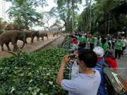 Saigon zoological-botanical park marks 150th anniversary