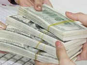HCM City to focus on drawing OV investors