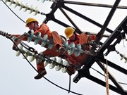 HCM City to cut power outages