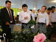 President visits hi-tech agricultural farms in Lam Dong