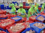 Tra fish export forecast to drop 5 percent this year