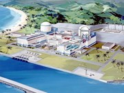 HCM City proposes new 520 million USD power plant