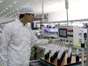 Vietnam welcomes record high FDI