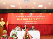 Vietnamese companies perform well in Laos