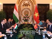 Vietnam, Hungary further ties across wide-ranging areas