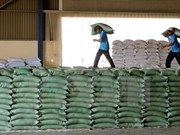 Rice exports increase sharply in January