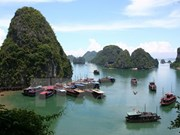 Vietnam becomes global destination thanks to ASEAN integration