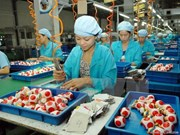 Vietnam embraces opportunities from economic integration: experts