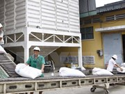 Workshop boosts rice export