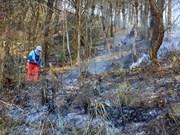 Dry weather raises fire alert in Dien Bien