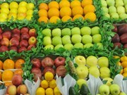 Fruit, vegetable exports to increase