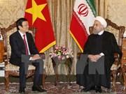 Vietnamese, Iranian Presidents hold talks