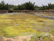MRC: drought, saline encroachment continue in Mekong Delta