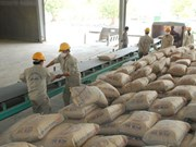 Cement firms face hard competition