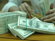 Foreign reserves soar to record high of 40 billion USD
