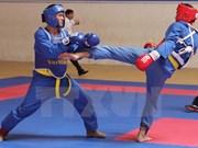 HCM City to host int'l martial arts festival