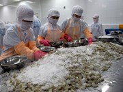 Vietnam's shrimp exports to UK rise sharply