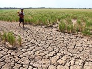 Cambodia launches water distribution campaign to drought –hit people