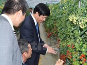 Wakayama prefecture seeks stronger ties with Vietnam