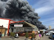 Fire in Berlin-based Dong Xuan centre causes huge economic loss