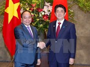 Vietnamese, Japanese Prime Ministers hold talks