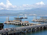 Vietnam to curtail oil exports