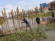 Conference seeks safe water supply for Mekong Delta
