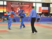 Fourth European Vovinam Championship held in Switzerland