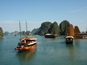 Ha Long, Cat Ba cooperate to improve environment