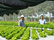 Binh Phuoc high-tech farming centre opens