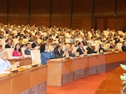 Heavy tasks wait for 14th National Assembly deputies