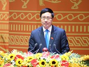 Vietnam displays active participation in AMM related events