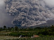 Indonesia: Volcanic eruptions hinder air travel