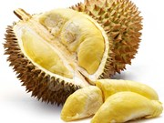 Thai gov't to stimulate durian exports to Hong Kong
