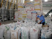 Vietnam's rice exports dwindle 18.4 percent in seven months
