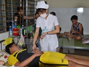 Health officials inspect Da Nang's dengue fever prevention