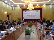 Vietnam-Japan Joint Initiative helps improve investment climate