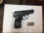 Airgun and 2,000 pellets hidden in import goods found