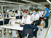 Vietnam looks forward to EVFTA benefits