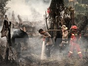 Indonesia strengthens forest fires monitoring in Kalimantan