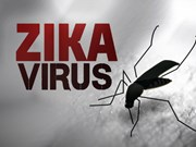Vietnam seeks early detection of Zika infections