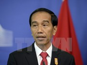 Indonesia hails ASEAN-Japan relations