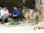 Hanoi responds to World Rabies Day