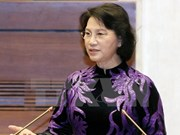 Vietnam aims for enhanced legislative ties with Laos